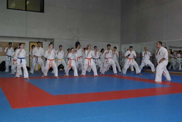 1006-stage-national-france-kyokushin-2010-56