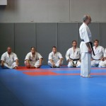 1006-stage-national-france-kyokushin-2010-01