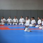 1006-stage-national-france-kyokushin-2010-02