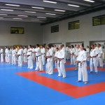 1006-stage-national-france-kyokushin-2010-03