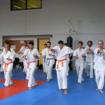 1006-stage-national-france-kyokushin-2010-04