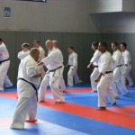1006-stage-national-france-kyokushin-2010-07