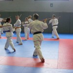 1006-stage-national-france-kyokushin-2010-08