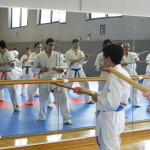 1006-stage-national-france-kyokushin-2010-09