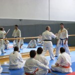 1006-stage-national-france-kyokushin-2010-11