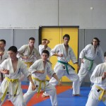 1006-stage-national-france-kyokushin-2010-12