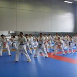 1006-stage-national-france-kyokushin-2010-13