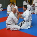 1006-stage-national-france-kyokushin-2010-14