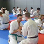 1006-stage-national-france-kyokushin-2010-17