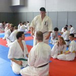 1006-stage-national-france-kyokushin-2010-21