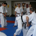 1006-stage-national-france-kyokushin-2010-22