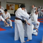 1006-stage-national-france-kyokushin-2010-23
