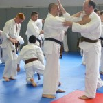1006-stage-national-france-kyokushin-2010-25