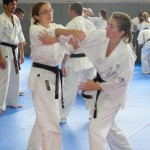 1006-stage-national-france-kyokushin-2010-26