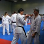 1006-stage-national-france-kyokushin-2010-29