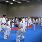 1006-stage-national-france-kyokushin-2010-33