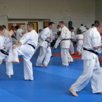 1006-stage-national-france-kyokushin-2010-34
