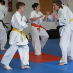 1006-stage-national-france-kyokushin-2010-35