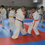 1006-stage-national-france-kyokushin-2010-38