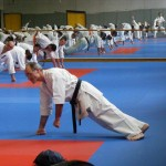 1006-stage-national-france-kyokushin-2010-40
