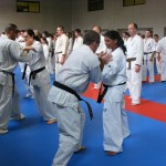 1006-stage-national-france-kyokushin-2010-43