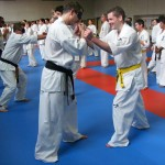 1006-stage-national-france-kyokushin-2010-44