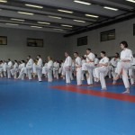 1006-stage-national-france-kyokushin-2010-48