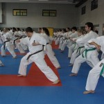 1006-stage-national-france-kyokushin-2010-49