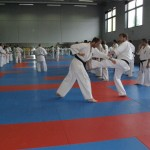 1006-stage-national-france-kyokushin-2010-52
