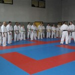 1006-stage-national-france-kyokushin-2010-54