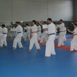 1006-stage-national-france-kyokushin-2010-60