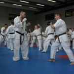 1006-stage-national-france-kyokushin-2010-61