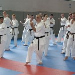 1006-stage-national-france-kyokushin-2010-64