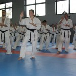 1006-stage-national-france-kyokushin-2010-66