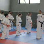 1006-stage-national-france-kyokushin-2010-67