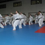 1006-stage-national-france-kyokushin-2010-71