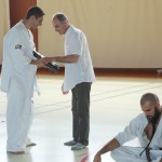 0007-france-kyokushin-stage-2013