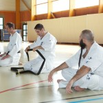 0011-france-kyokushin-stage-2013