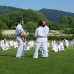 0026-france-kyokushin-stage-2013