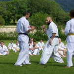 0028-france-kyokushin-stage-2013