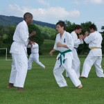 0053-france-kyokushin-stage-2013