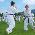0056-france-kyokushin-stage-2013