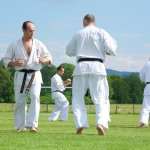 0066-france-kyokushin-stage-2013