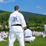 0071-france-kyokushin-stage-2013