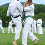 0079-france-kyokushin-stage-2013