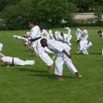 0094-france-kyokushin-stage-2013