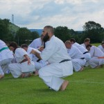 0110-france-kyokushin-stage-2013