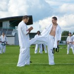 0130-france-kyokushin-stage-2013