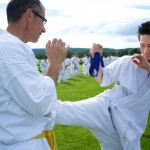 0137-france-kyokushin-stage-2013