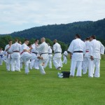 0189-france-kyokushin-stage-2013